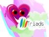 logo Triads